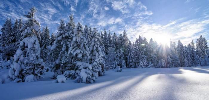 neige-hiver-saison-bottes-boots-bottines-chaussuresonline-tendance-article-lagazzettabychiara-froid