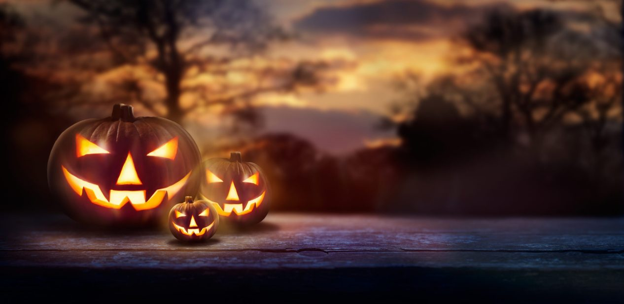 A woodland sunset with the spooky evil glowing eyes of Jack O' Lanterns on the left of a wooden bench on halloween night.