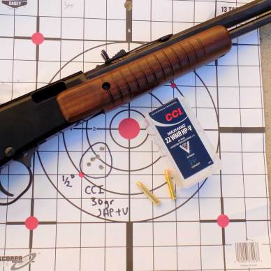 CCI's Maxi Mag +V ammunition with Henry Octagon Pump rifle and target