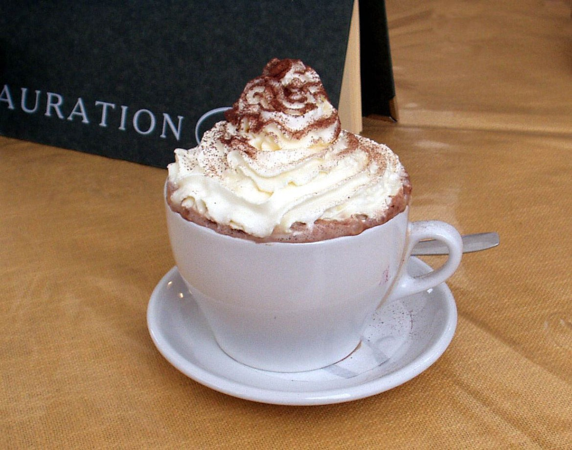 Picture shows a white mug filled with hot chocolate and whip cream with cinnamon on top.