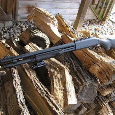 Remington 870 black pump-action shotgun laying on some wood logs