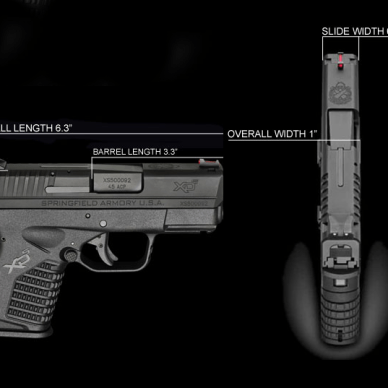 Springfield Armory XD-S 45