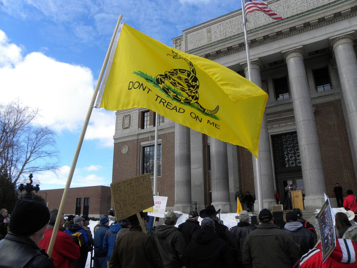 "Protestors outside a state building holding a ""don't tread on me"" flag"