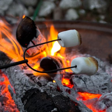 Picture shows someone roasting marshmallows over a campfire.