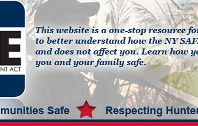 New York SAFE Act blue and red logo.
