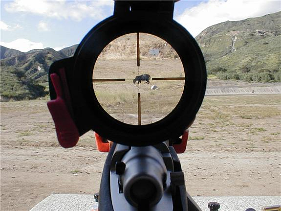 Scopes also magnify your target. Photo courtesy of Alec Dawson.