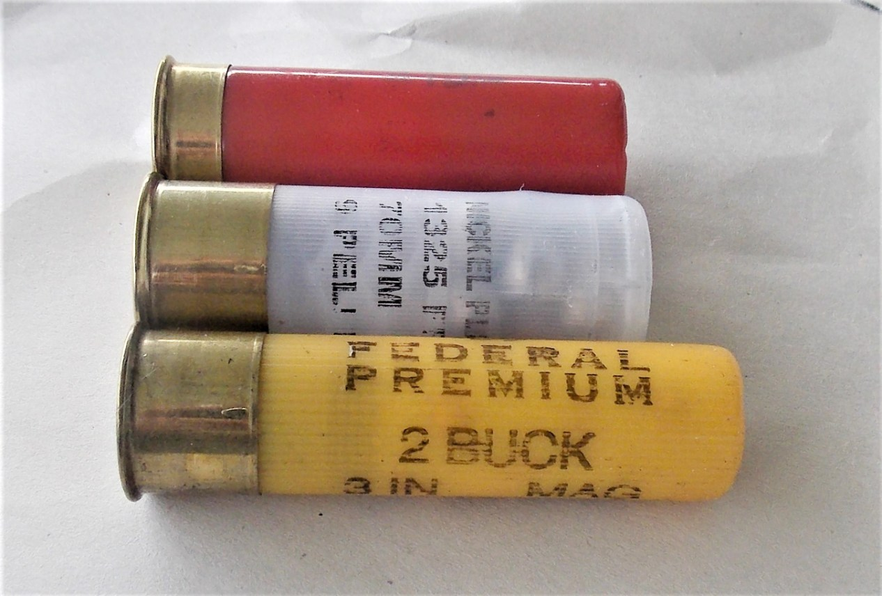 12 and 20 gauge shotshells