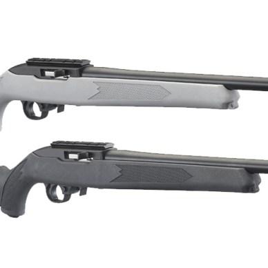 Ruger 10/22 Rifles