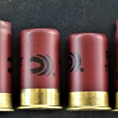 Federal Shells - fired and unfired