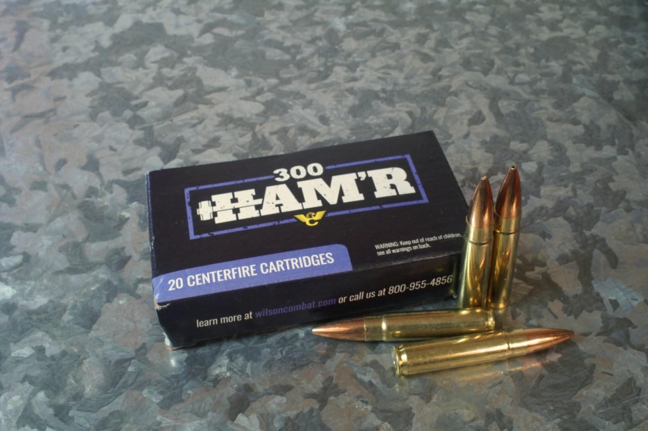 300 HAM'R - Ammo