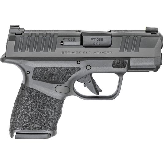 Father's Day Springfield Armory Hellcat