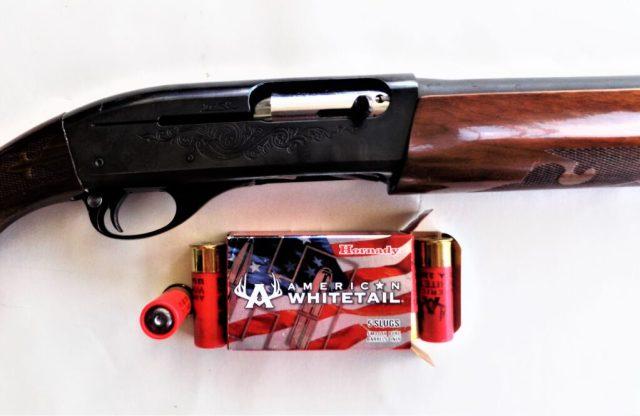 Hornady 12-Gauge Slugs and Shotgun