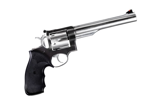 Ruger Super Redhawk bear gun