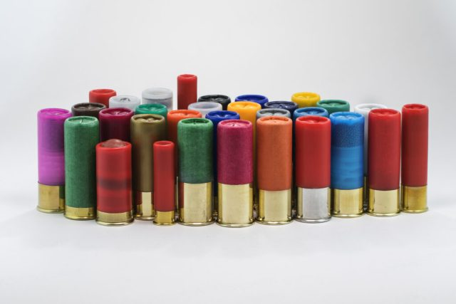 Shotgun shells on an isolated background including 12, 16, 20, 36, 410 guage