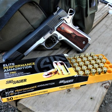 Springfield Ronin 1911 and SIG Sauer ammo .45 ACP Loads