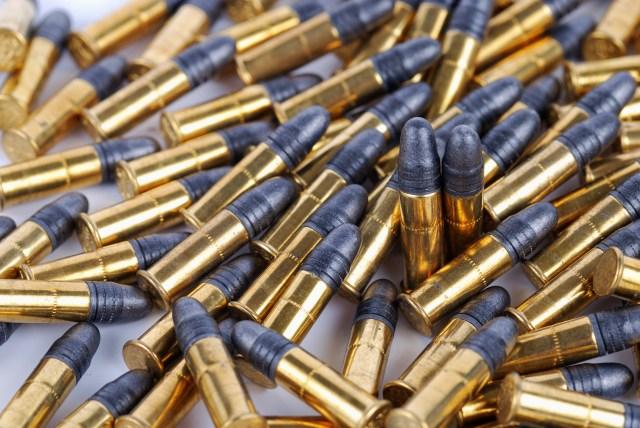 .22 LR Ammo calibers self-defense