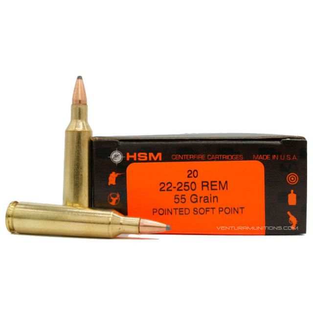 .22-250 ammo box and rounds