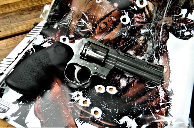 Colt Python on Target