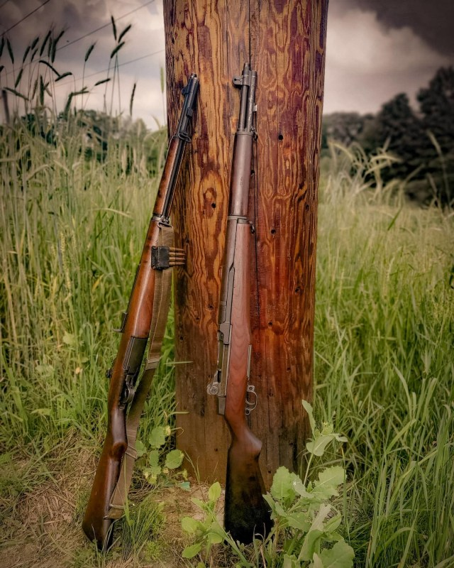 Two wood stock rifles leaning on tree