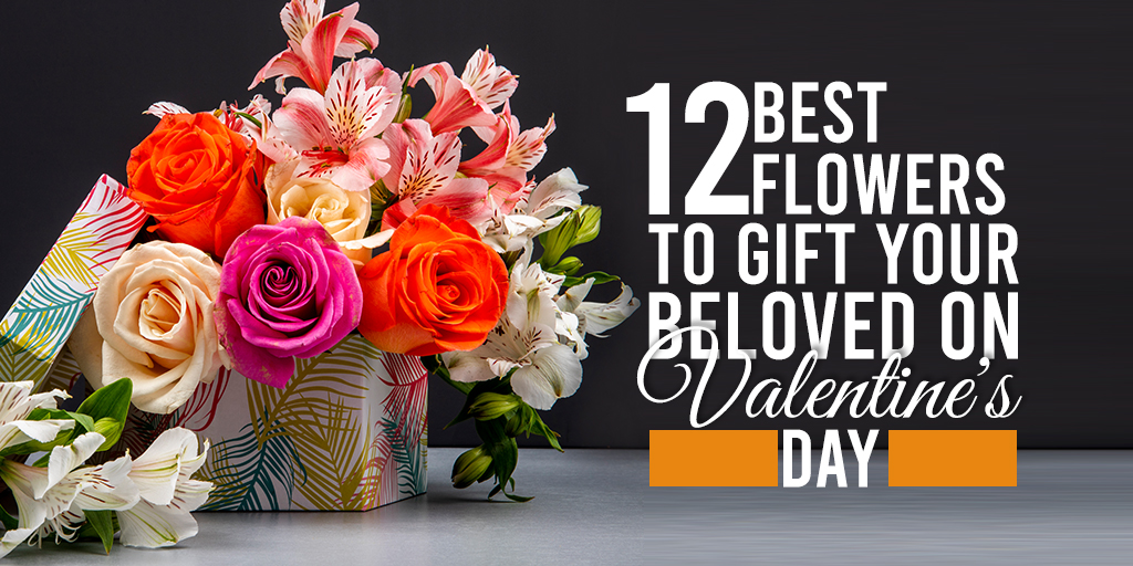 12 Best Flowers to Gift Your Beloved on Valentine's Day-feature