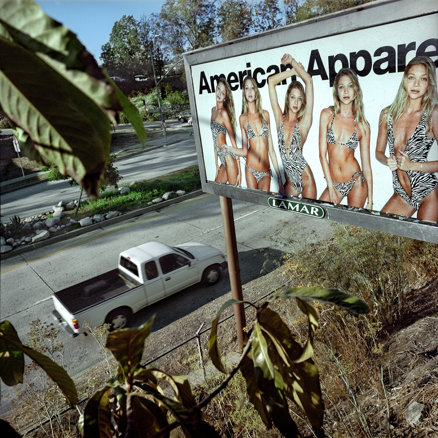 Thomas Alleman The American Apparel