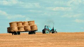 farming - outdoor activity guides