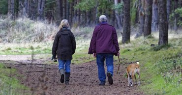 Best Dog Walking Boots – Our Top 5 Picks!