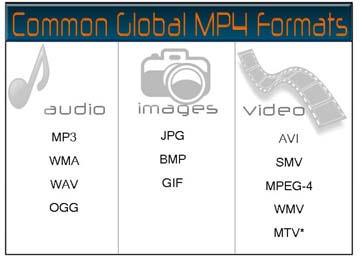 Common MP4 file formats