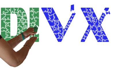 Divx puzzle copy