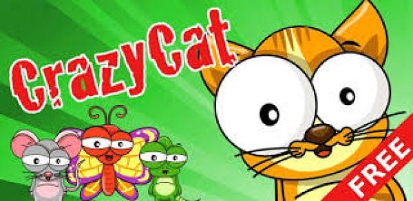 CrazyCat app