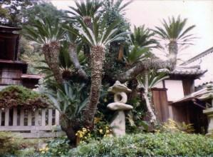 Our home in Shizuki, Awaji