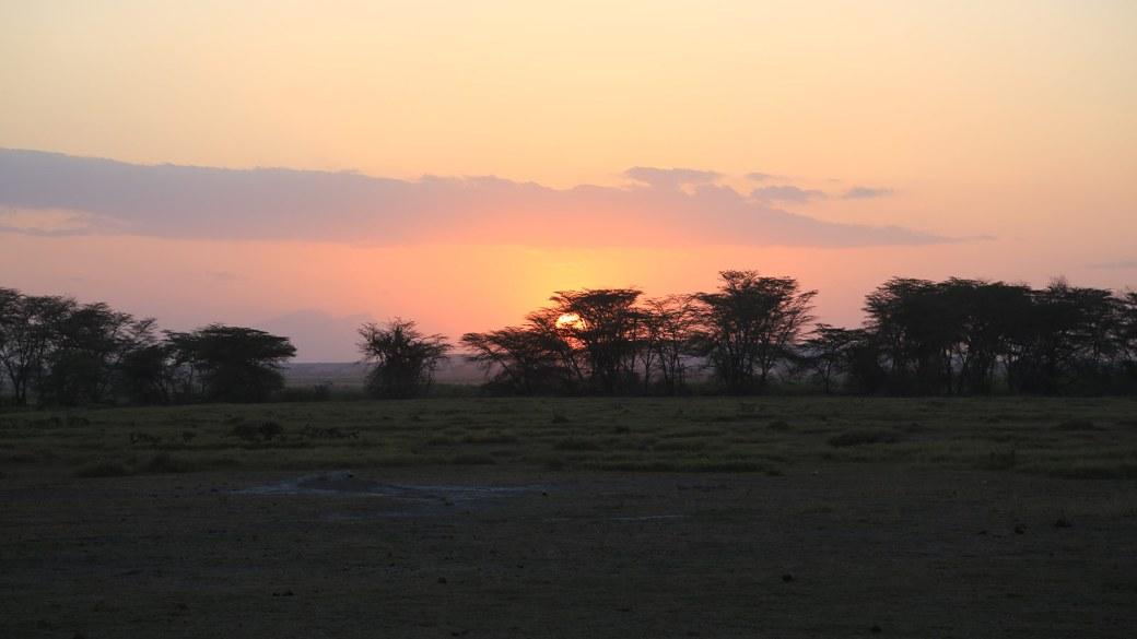Sonnenuntergang über Amboseli