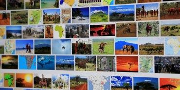 """Bilderfund zu """"Kenia"""" bei Google"""