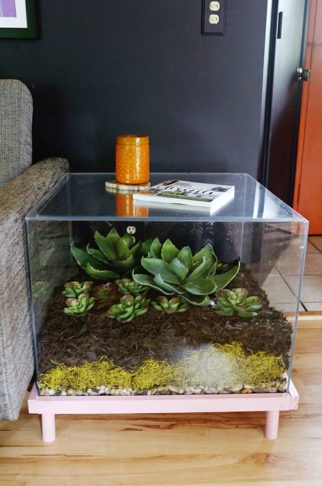 1 650x980 - Sukulent Moved To The Table! Coffee Table Terrarium Made