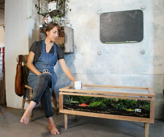the terrarium coffee table