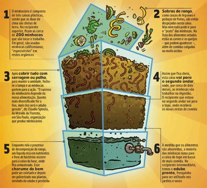 Como funciona o minhocário e a produção do chorume do bem