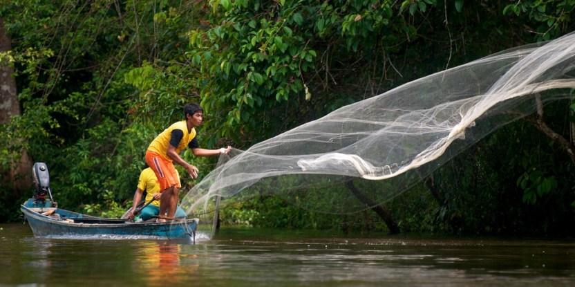 REDD+ menolong masyarakat hutan mengembangkan sumber mata pencaharian alternatif, seperti kolam ikan yang tergambar disini.  ©Center For International Forestry Research/Ramadian Bachtiar