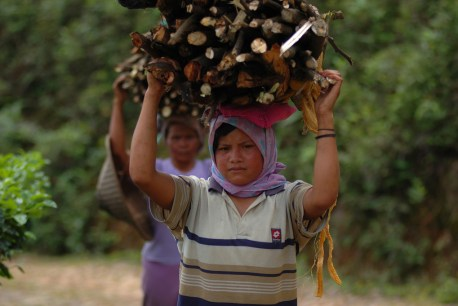 Firewood is still collected by women in many parts of the world. Aulia Erlangga/CIFOR