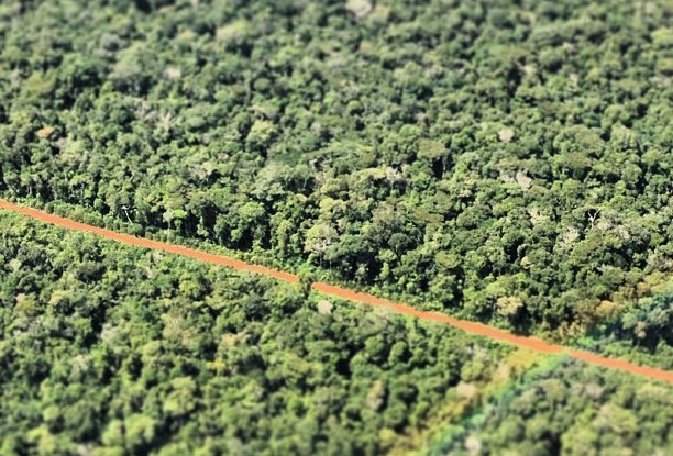 Forest landscape in Acre, Brazil. Kate Evans/CIFOR