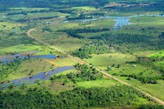 Forests sustaining agriculture?