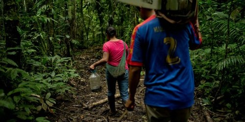 Researchers have surveyed around 20 Kichwa women in Orellana and Napo.