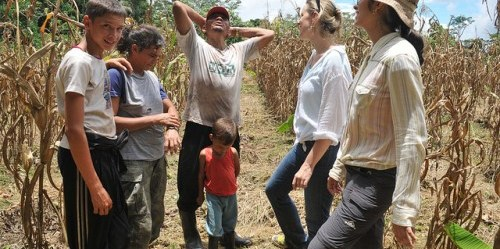 Kaline Rossi spent a month visiting families and interviewing them on the progress of REDD+ initiatives in Brazil.