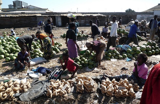 Women produce more than 50 percent of the world's food, but earn only 10 percent of its income.