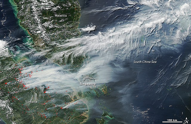 Earlier this year, fires swept across parts of the Indonesian island of Sumatra, causing record-breaking air pollution levels in Singapore and Malaysia.