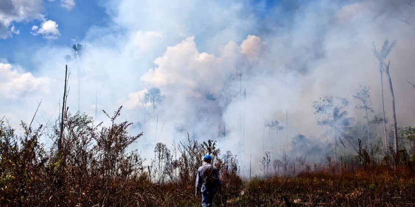 Oil palm planters, farmers and cattle ranchers burn fields to clear weeds and set fires in pastures to eliminate ticks that annoy livestock.