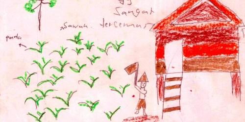 Detil gambar dari seorang anak yang dilihat dalam studi baru-baru ini di Kalimantan, Indonesia. Foto @ CIFOR