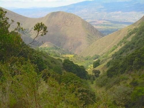 Cuenca de Chaina en Colombia. El país sudamericano lidera esfuerzos de restauración ecológica en la región latinoamericana. Foto: Sven Wunder, CIFOR