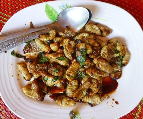 Une assiette pleine de larves du charançon, prêtes à être mangées. Les chercheurs du CIFOR au Cameroun ont élaboré une nouvelle technique pour améliorer l'élevage de ces larves. Hoddle Lab, UC Riverside/creative commons