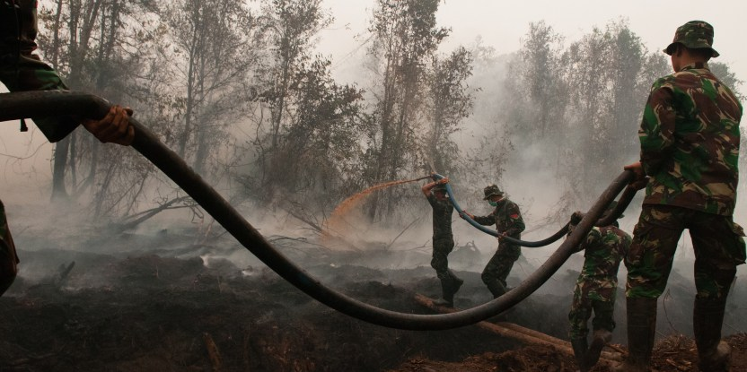 Army officers try to extinguish fires in peat land areas, outside Palangka Raya, Central Kalimantan. Aulia Erlangga/ CIFOR