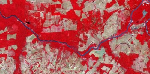 Deforestación en Mato Grosso, Brasil. Analizar datos a nivel de país brinda un mejor enfoque para las evaluaciones mundiales. Imagen por ASTER vía Wikimedia Commons.